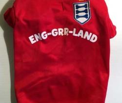 Camiseta de fútbol para perro de England – Dog Wear – ENG-GRR-LAND