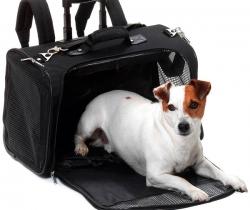 Trolley Mochila transporte mascotas – Karlie Smart Trolley