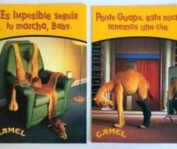 Lote 2 postales publicitarias de tabaco Camel
